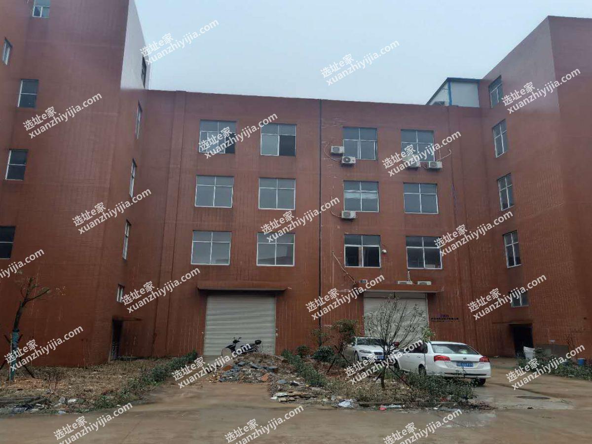 武汉阳逻经济开发区2400平框架厂房出售(出租)
