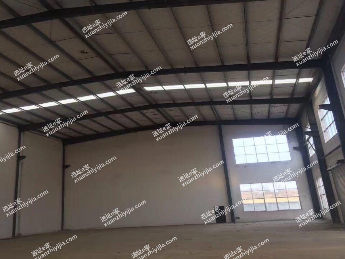 阳逻开发区2000平米全新单层钢构厂房出售