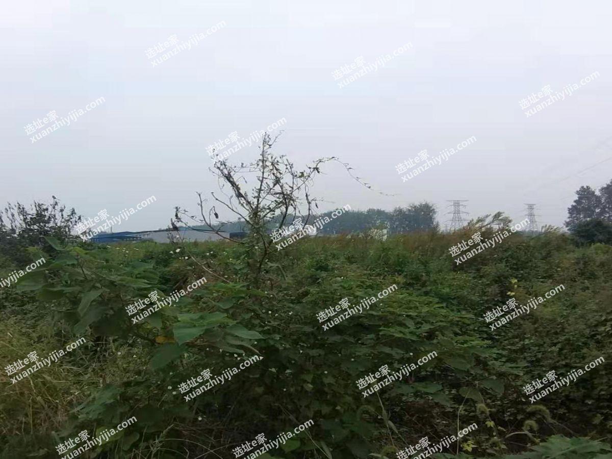 汉川马口45亩工业用地转让