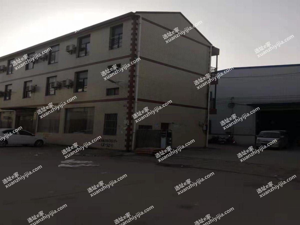 东山头3500平钢构厂房出售